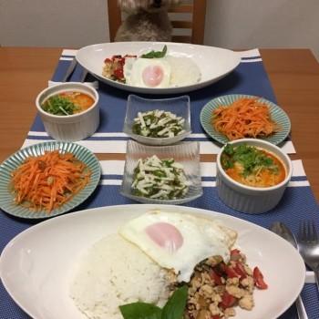 最近のお夕食〜( ´∀`)
