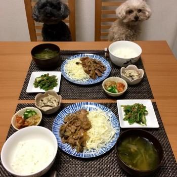 いつかのお夕食〜(o^^o)
