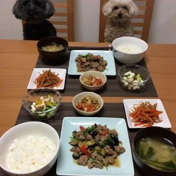 昨日のお夕食〜(*´∇`*)