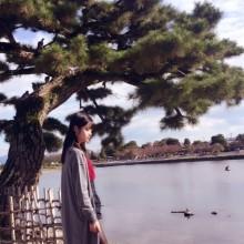 文化の日in京都