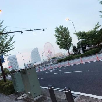 お仕事で横浜!