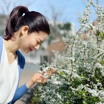 春のお花と