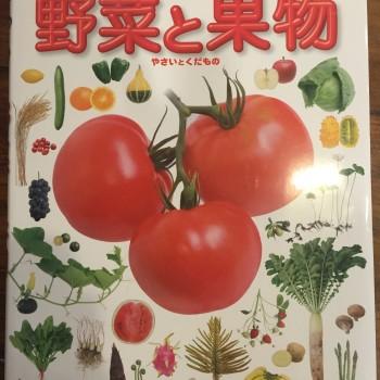 理科のお勉強(*^^*)(小4)