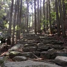 紀勢自動車道が全線開通して、熊野や那智勝浦に。1日目