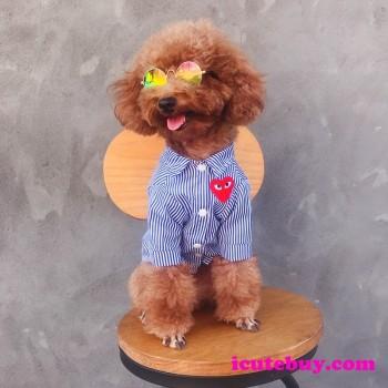 犬服 ブランド品 小型犬 中型犬 大型犬 春夏のペットウェア オシャレ