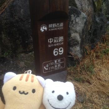 クマの古道散歩:熊野古道 中辺路に品行方正なクマ出没