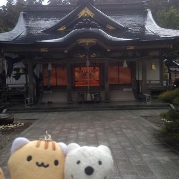 クマの古道散歩:熊野本宮大社に品行方正なクマ出没