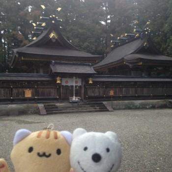 クマの古道散歩:熊野本宮大社に品行方正なクマ出没2