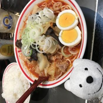 先日の北極やさい麺大盛り、ライス&角ハイボール/蒙古タンメン中本
