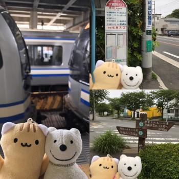 クマ散歩:逗子から大楠芦名口に転送