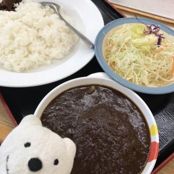 先日のハンバーグカレー大盛&生野菜/松屋