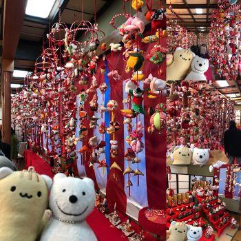 クマ散歩:川勾神社で品行方正なクマは雛の吊るし飾りに出会う