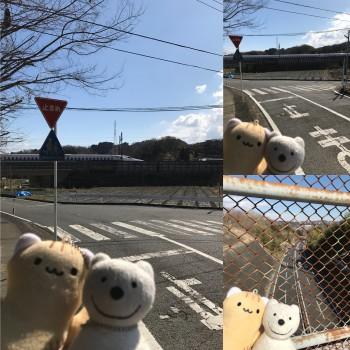 クマ散歩:上町で品行方正なクマは新幹線と小田原厚木道路に出会う