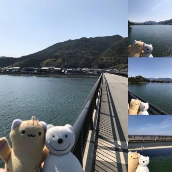 クマ散歩:常磐橋を品行方正なクマが渡る
