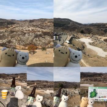 クマ散歩:秋吉台に品行方正なクマ出没