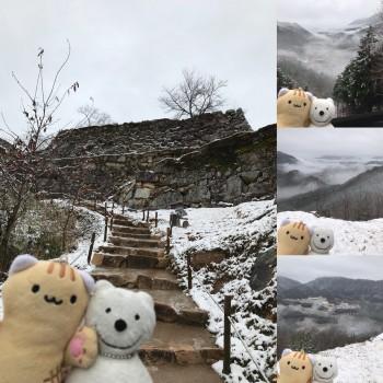 クマ散歩:竹田城跡に品行方正なクマ出没