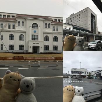 クマ散歩:豊岡に品行方正なクマ出没