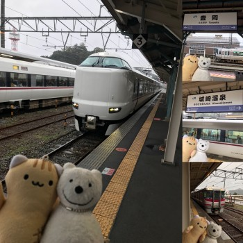 クマ散歩:特急きのさき・JR山陰本線で豊岡から城崎温泉に転送