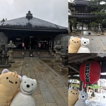 クマ散歩:智恩寺に品行方正なクマ出没