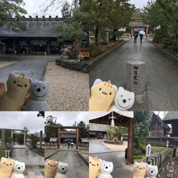クマ散歩:元伊勢籠神社に品行方正なクマ出没 The Bear entered Motoise Kono Shrine!♪☆(^O^)/