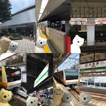 クマ散歩:東京メトロ丸ノ内線とJR中央線で後楽園から八王子に転送