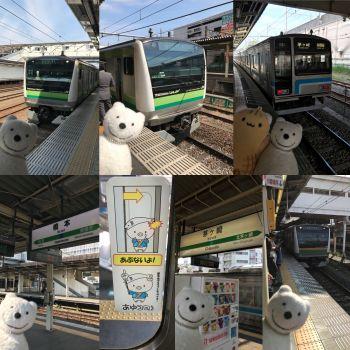 クマ散歩:JR横浜線とJR相模線で八王子から茅ケ崎に転送