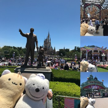 クマ散歩:東京ディズニーランドに品行方正なクマ出没