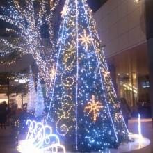 クリスマスツリーだよ(^^)b