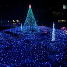 またまたまたクリスマスツリーだよ(^^)b