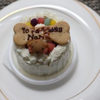 NaNaの10歳のお誕生日!
