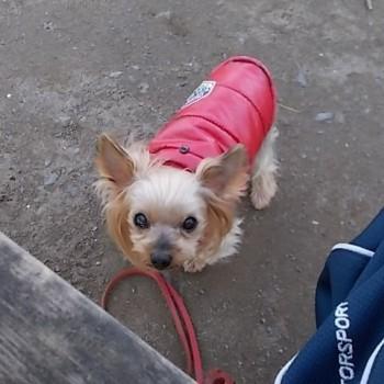 昨日のお散歩!