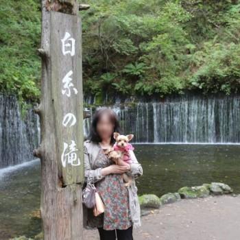 白糸の滝…!