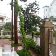 超大型台風