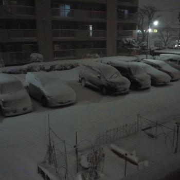 大雪になりました。
