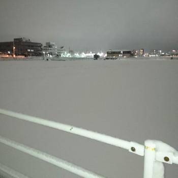 雪やコンコン降ってわ降ってわコンコン
