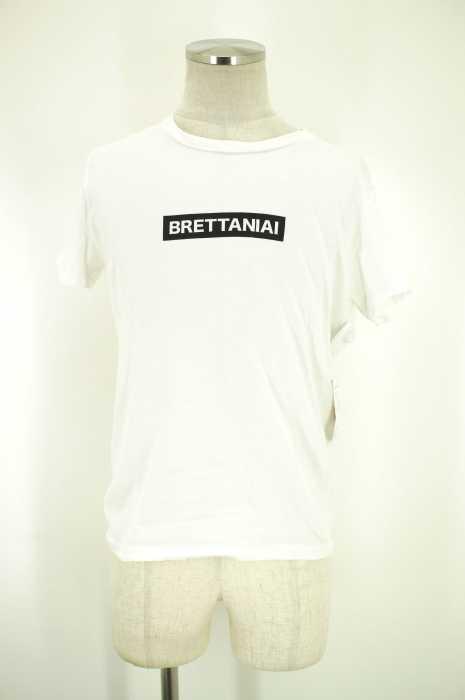 LOUNGE LIZARD (ラウンジリザード) BRETTANIAI Tシャツ メンズ トップス
