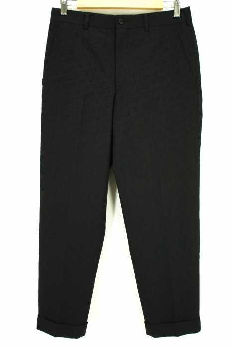 COMME des GARCONS HOMME PLUS (コムデギャルソンオムプリュス) AD2016 刺繍総柄スラックス メンズ パンツ