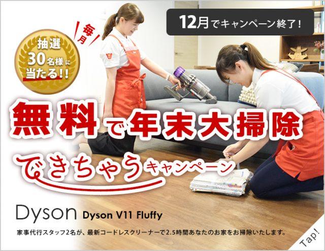 家事代行2.5時間+Dyson最新コードレスクリーナー無料体験プレゼントで年末大掃除sp