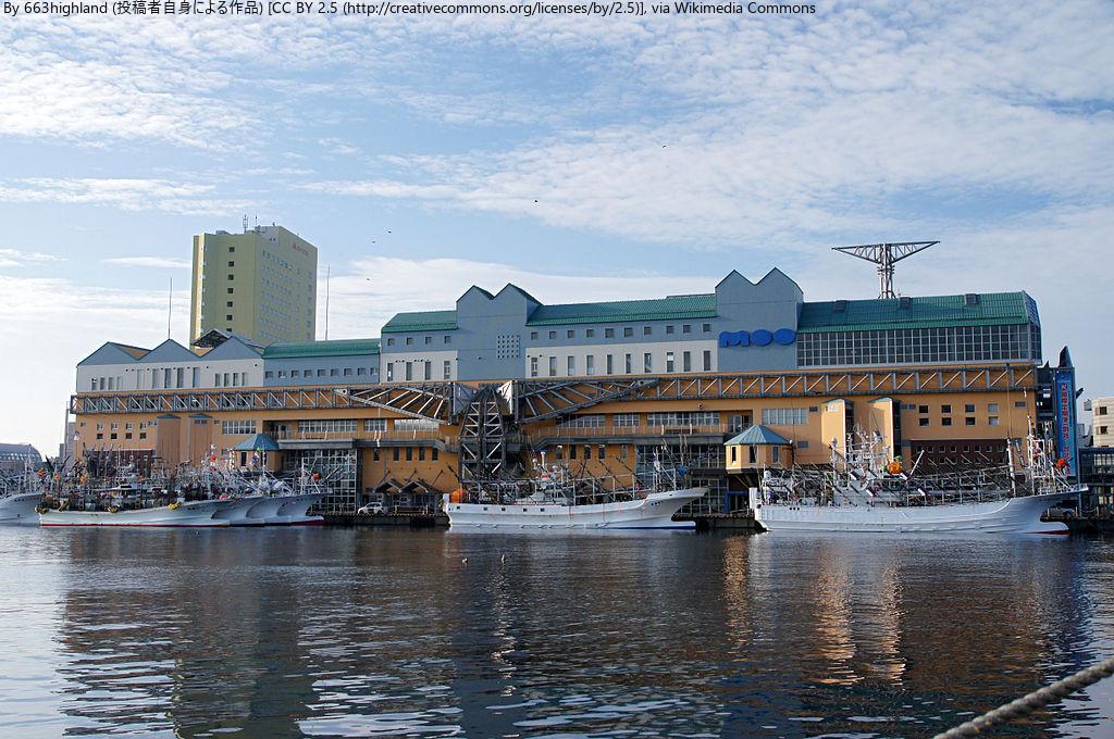 さかまた組と行く 釧路沖海洋生物調査同行ツアー1日間 釧路市 (10/28〜30) 札幌