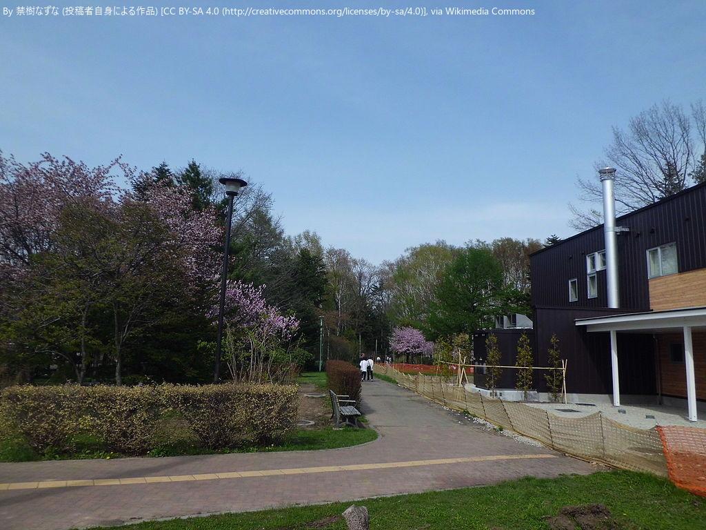 自然教室 夏の観察会 豊平区豊平公園緑のセンター (6/25) 札幌