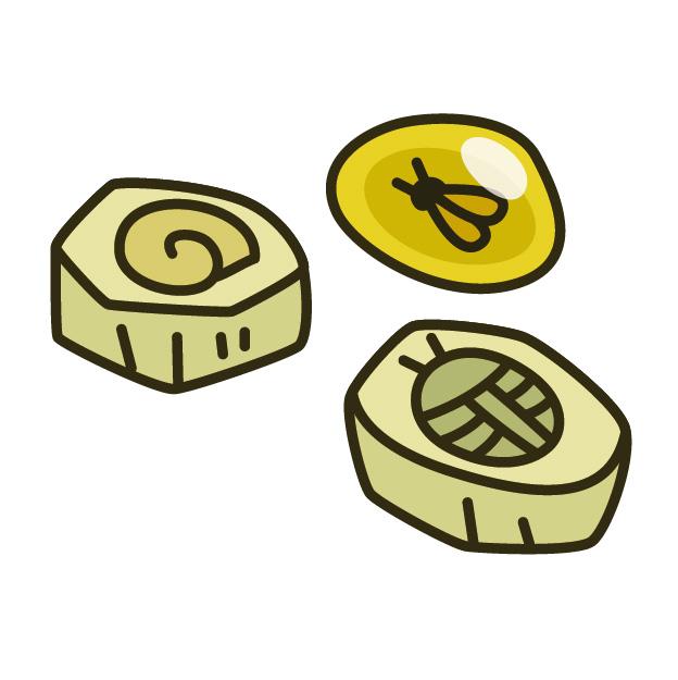 化石はプレゼントします 化石クリーニング体験教室 中央区 (8/18) 札幌
