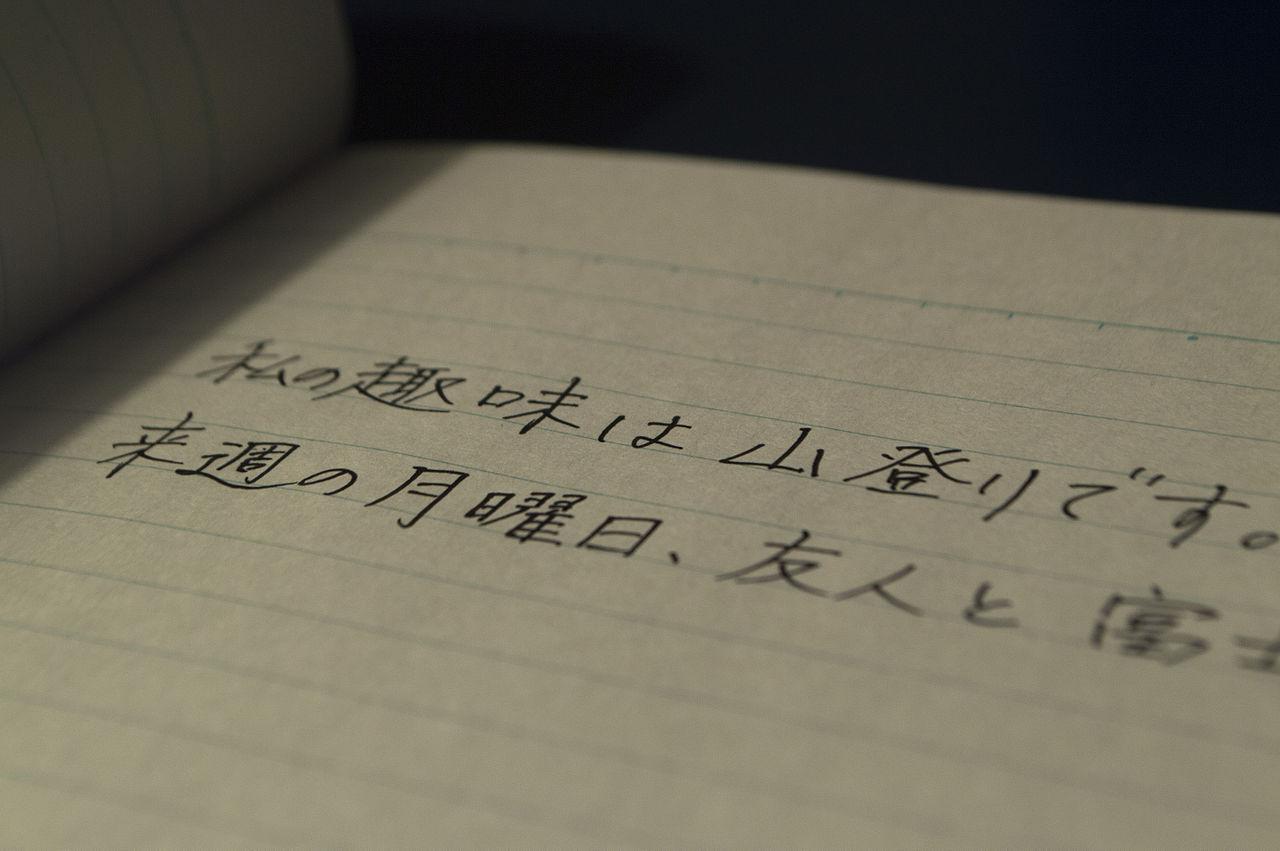 Daijoubu And Other Useful Japanese Phrases For Tourists Yabai