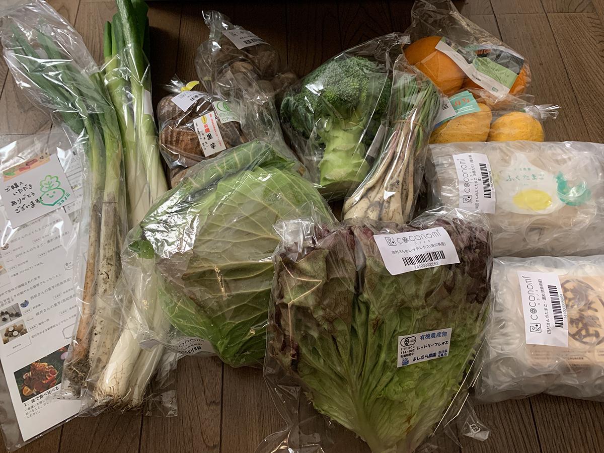 COCONOMI 野菜