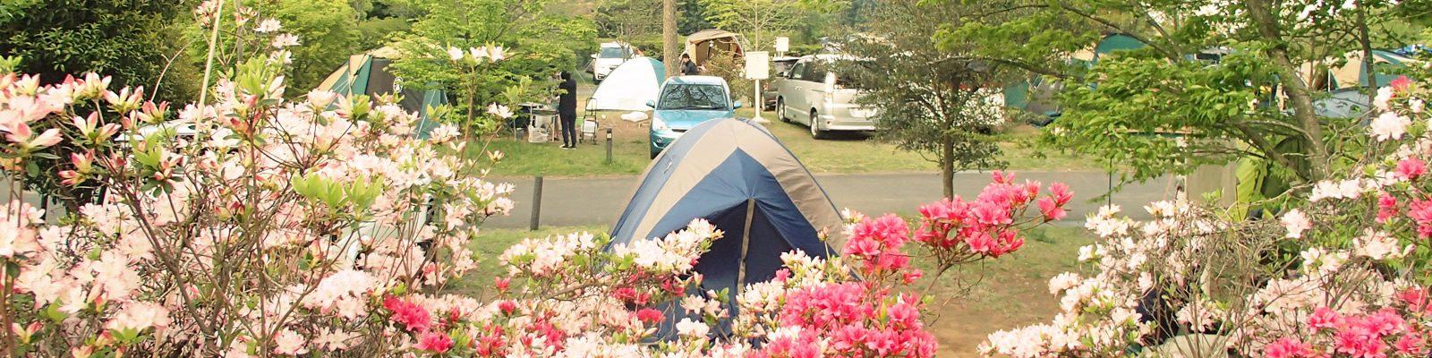 つくばねオートキャンプ場のキャンプ風景