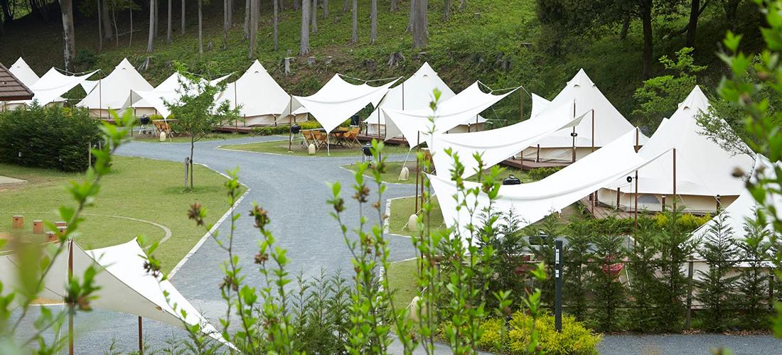 ツインリンクもてぎ 森と星空のキャンプヴィレッジのテント風景