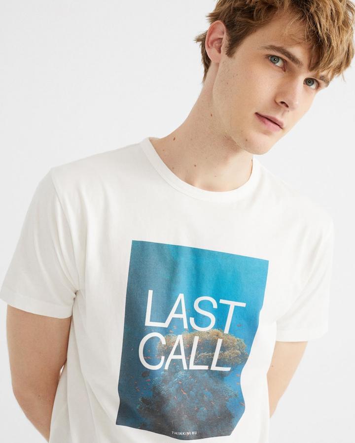 オーガニックコットン LAST CALL