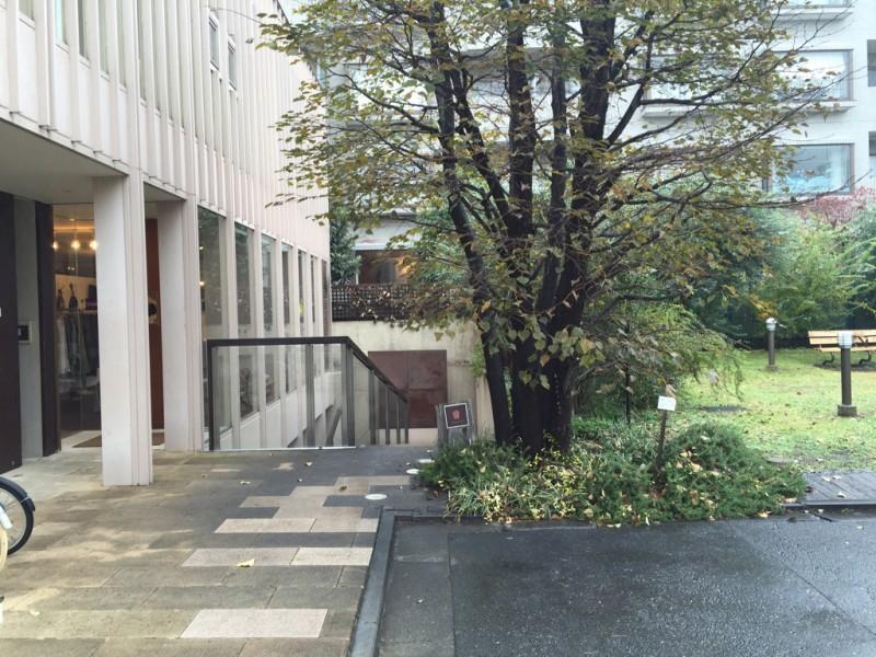 ichirukichijyojiphoto39