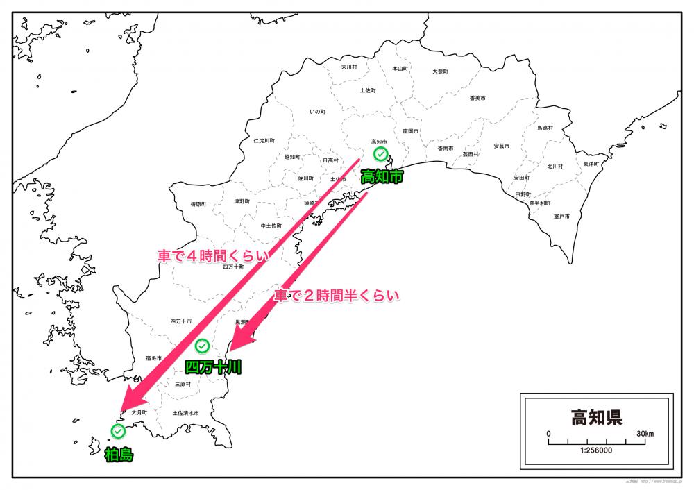 kochi-kochi-3 2