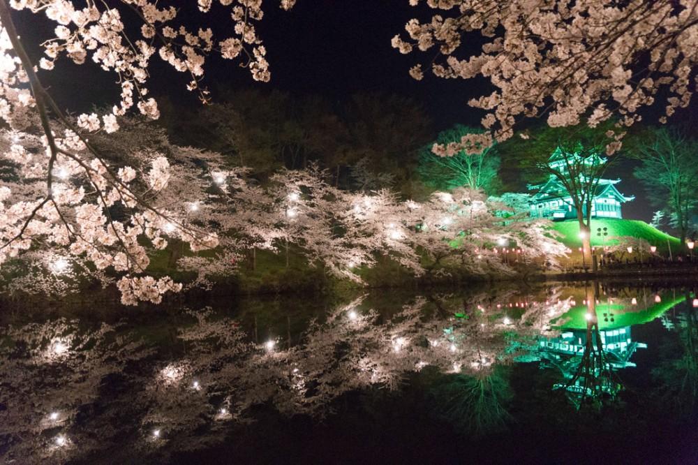 niigata-takada-sakura