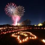 【今週末3/11はお祭りも!】偕楽園の梅は今が見頃!地元茨城県民が水戸の現地からレポートします。